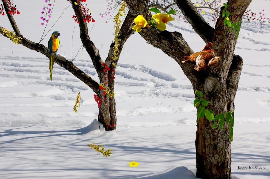 Somewhere Seasons
